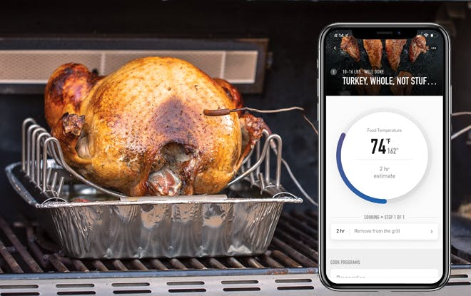 Turkey, Gas Grill, Weber Connect